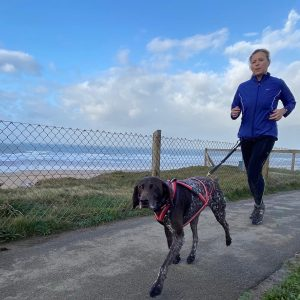 running with your dogs cornwall bude