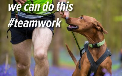 10 reasons to start your canicross journey with your dog.