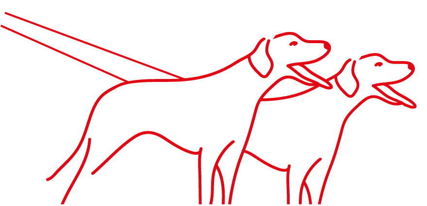 Line Drawing of Canicross Dogs