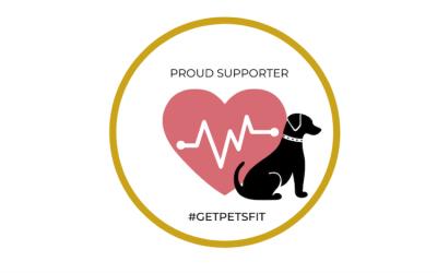 GetPetsFit – Canicross