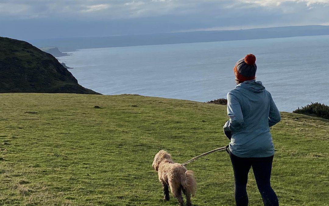 Canicross in Cornwall